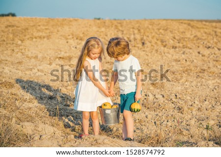 Sweet childhood. Childhood on countryside. Happy little farmers having fun on field. Ecology concept child. Eco life. Springtime on the ranch. Cute little children enjoying on farm #1528574792
