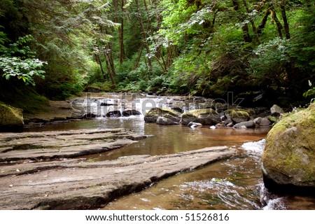 Sweet Creek falls in Oregon USA