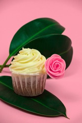 sweet cupcakes decorated with roses and tropical leave on a pastel pink background