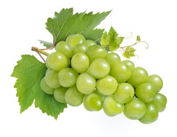 Sweet Green grape with leaves isolated on white, Shine Muscat Grape isolated on white background With clipping path,