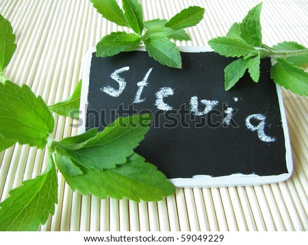 Sweet herb with nameplate
