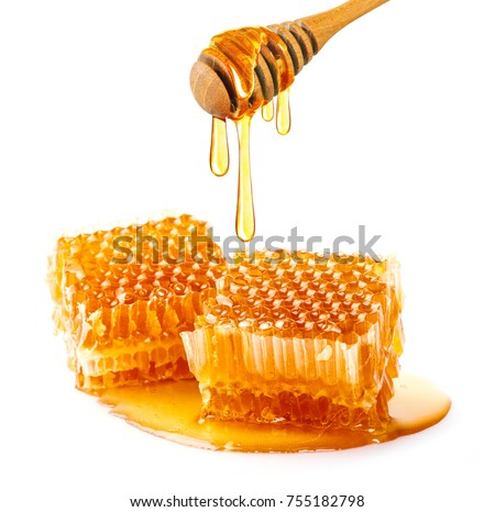 Sweet honeycomb and wooden dipper with dripping honey isolated on white background, bee products by organic natural ingredients concept