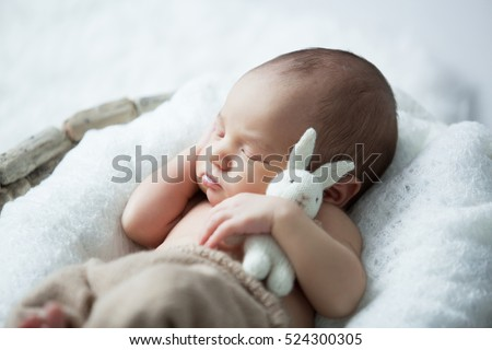 sweet newborn baby sleeps with a toy hare on a white background