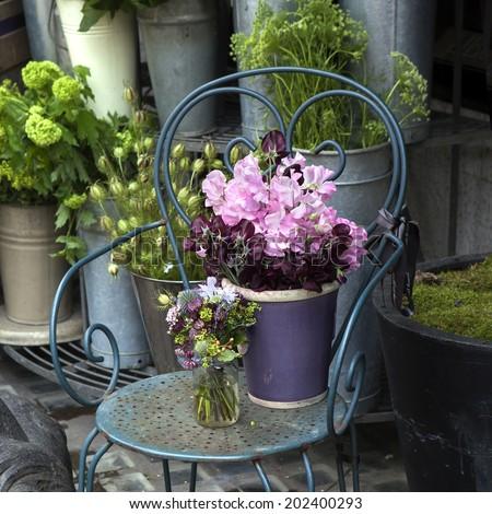 Sweet pea, Lathyrus odoratus, flowers in a purple vase standing on cast-iron chair.