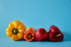 Sweet pepper. Yellow, orange and red bell pepper on light blue background. Food. Real food.