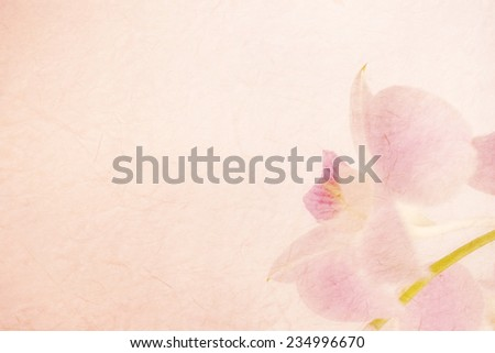 sweet pink orchids on mulberry...
