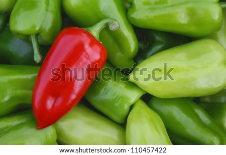 Sweet red pepper against green pepper