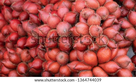 Sweet Salacca zalacca tropical fruit planted in Thailand #1364744039
