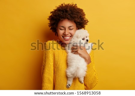 Sweet shot of cheerful Afro woman embraces with big love her flully white spitz dog, visit professional veterinarian, pose togeher in studio against yellow wall. Love to animals. Pet after grooming Stockfoto ©