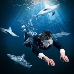 Swimming among sharks