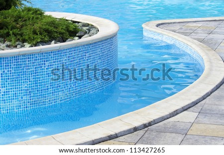 Swimming pool | Blue spa swimming pool with small pine tree inside