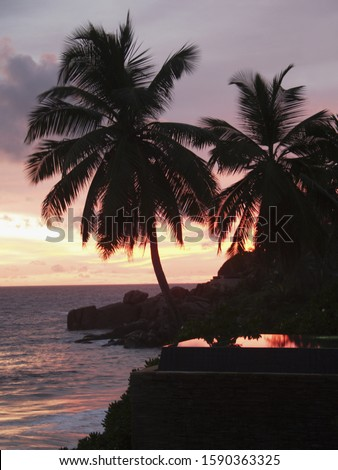 Swimming pool of the Banyan Tree Hotel with Palm Trees at Sunset, Anse Intendance, Mahe', Seychelles