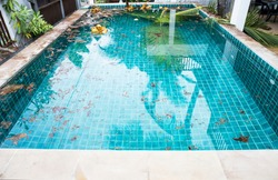 Swimming pool problem and service concept, dirt from coconut tree falling into swimming pool, tripical outdoor swimming pool