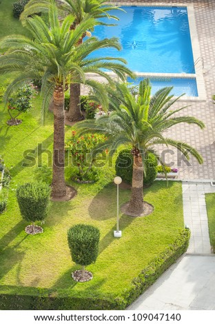 Swimming pool with a lot of vegetation around