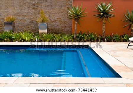 Swimming pool with blue water and palm trees