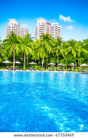 swimming pool with coconut tree and white umbrella