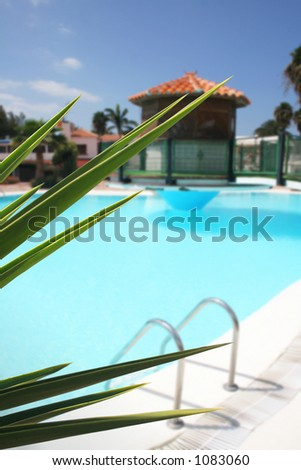 Swimming pool with steps and foliage