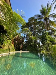 Swimming pool with Tropical plants and palm trees