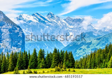 Swiss Alps/ Mountains/ Forest #685193557