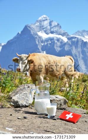 Swiss chocolate and jug of milk on the Alpine meadow. Switzerland