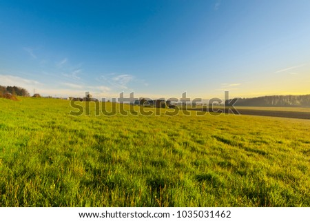 Shutterstock Swiss village surrounded by forests and plowed fields at sunset. Agriculture in Switzerland, arable land and pastures.