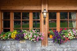 Switzerland wooden house windows decorated by flower