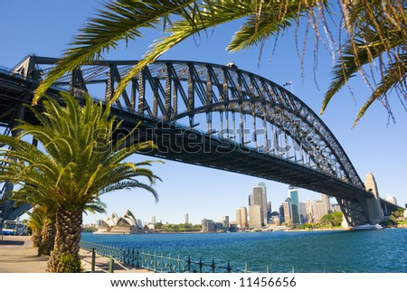 Sydney Harbour ( harbor ) with the Bridge, Opera House and Palm trees in foreground on a perfect blue sky day