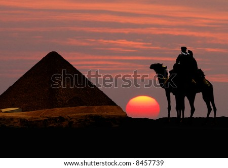 Symbol Egypt's - pyramid, camel and sunset