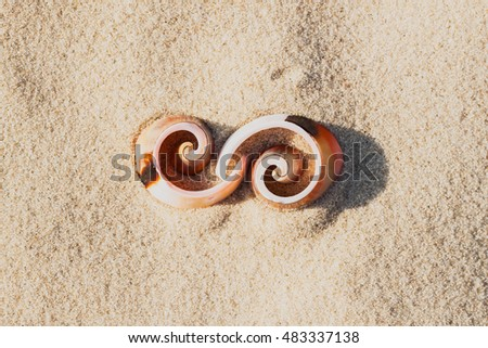 Symbol infinity of shells on the beach, element  graphic design #483337138