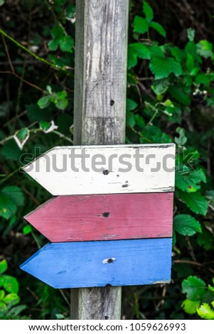 Symbols with colors and no specific information in the forest of Germany Europe #1059626993