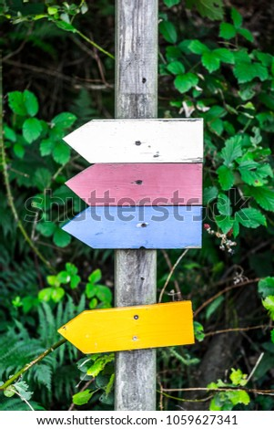 Symbols with colors and no specific information in the forest of Germany Europe #1059627341