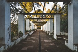 Symmetrical view of the passageway of a romantic style garden covered by an old pergola