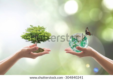 the role of human beings in preserving the balance in the environment on earth Environment protection is an important aspect of islam being stewards of the earth, it is the responsibility of muslims to care for the environment in a proactive manner there is a definite purpose behind the creation of different species, be it plants or animals.