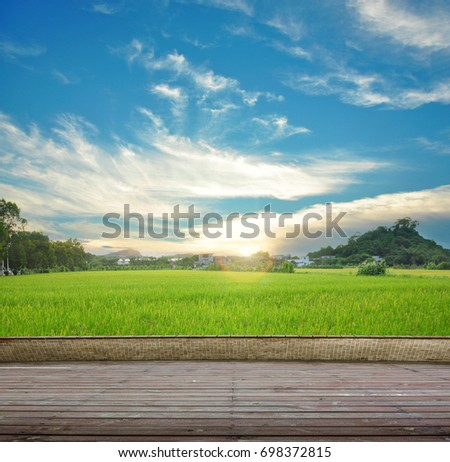 Synthesis of wooden planks floor and green field background. Green field under the sun. Wooden planks floor. Beauty nature background. #698372815