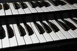 Synthesizer keys. Two rows. Musical instrument, octaves.