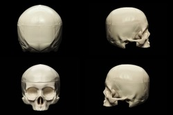 synthetic skull many angle view on black with clipping path