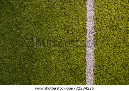 Synthetic sports grounds coating. White marking line details and background.