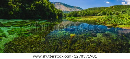Syri i Kaltër - Blue Eye - geological phenomenon where a stream of fresh, cold water flow to the surface from under ground. Amazing green vegetation around. Albania, Saranda area.