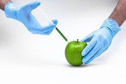 Syringe injection into a apple with sorbic acid waiting for long-term storage of fruit. Genetic modified foods. isolated on white background