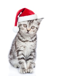 Tabby cat in red christmas hat. isolated on white background