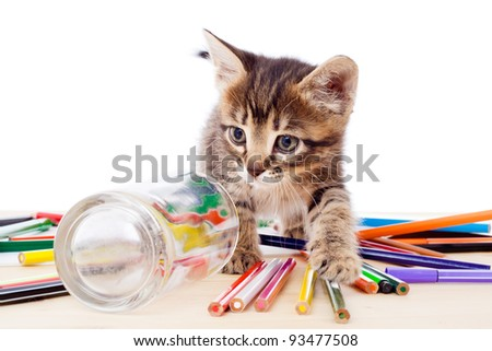 Tabby kitten on table with color pencils, isolated on white