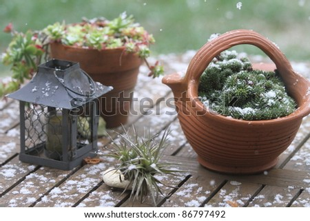 Table and pots covered by snow