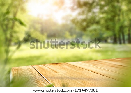 Table background of free space and spring time in garden