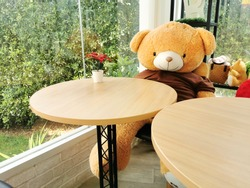 table Cafe shop Interior and  Teddy bear