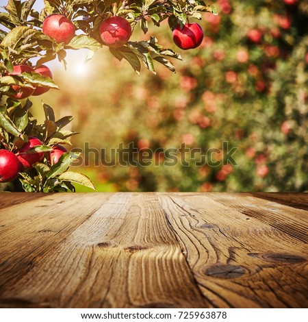 table space and apple garden of trees and fruits