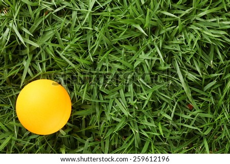Table tennis ball orange color put on grass background represent the sport accessory material related.
