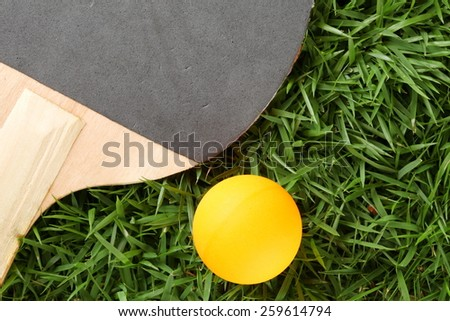 Table tennis ball orange color with racket or paddle put on grass background represent the sport accessory material related.