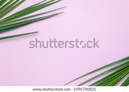 Photo of Table top view aerial image of summer season holiday background concept.Flat lay coconut or palm green leaf on modern rustic pink paper backdrop.Free space for creative design mock up text for content