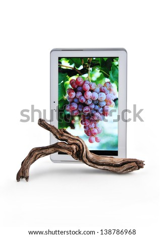 tablet with the image of a clusters of grapes and before a vineyard branch