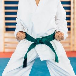 Tae kwon do stance